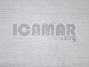 logo ICAMAR